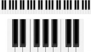 Best Digital Piano Guide