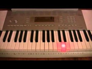 Good beginner keyboard Casio LK-280